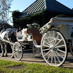 Carriages of Pensacola